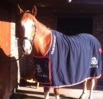 Harry Hickstead rug