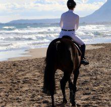 Dolly beach 1